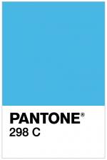 PANTONE 298 C